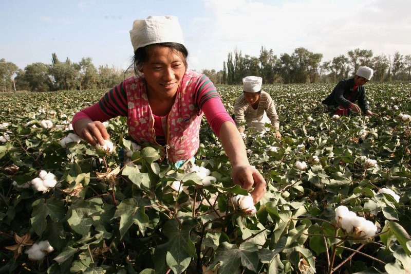 ZCE to set up transit storage for cotton futures delivery in Xinjiang