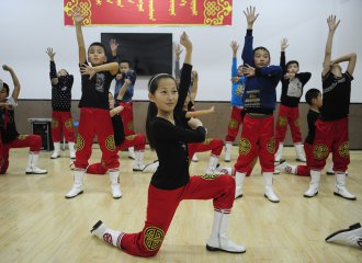 Chinese govt plans 70 mln USD in artistic support