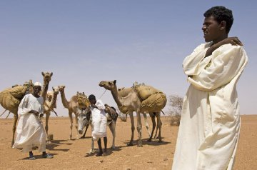 Size of foreign investments in Sudan amounts to 38 bln USD