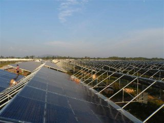 Qingdao launches first special fund for PV agriculture project investment