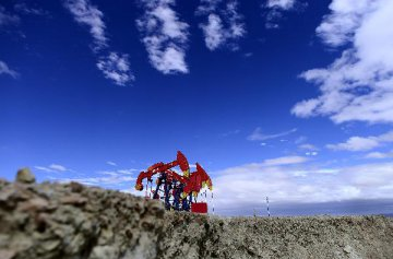 NDRC works on reform plan on oil, gas sector, official