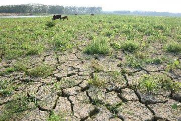 China starts emergency response to Shanxi drought