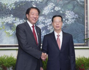 News Analysis:Sino-Singapore co-operation role  in regional collaboration