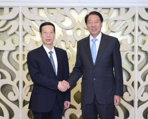 China, Singapore hold annual cooperation meetings