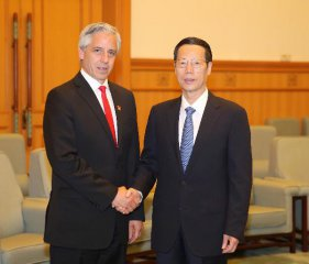 Chinese vice premier meets vice president of Bolivia