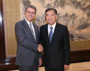 Chinese vice premier meets WTO director-general