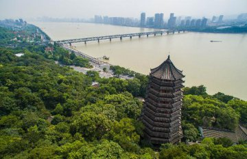 China Focus: Eastern Chinese city ready to embrace G20 next year