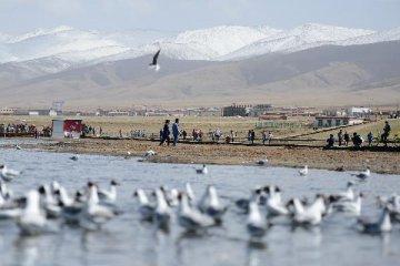 China to build worlds first salt lake data center