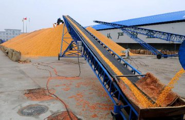 China Nov. grain imports at 2.17 mln t, GAC