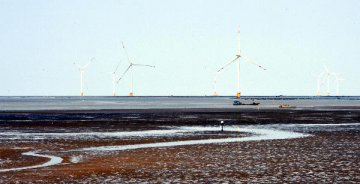 China, LatAm urged to jointly develop renewable energy