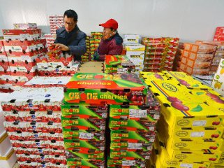Fruits import via ports in Guangxi soar 45pct o-yr to 1.0367 mln t in 2015