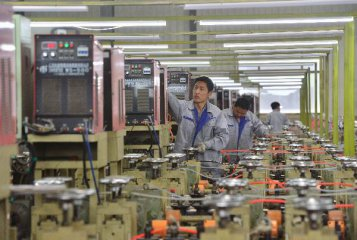China Voice: Iron-fist needed for Chinas green development