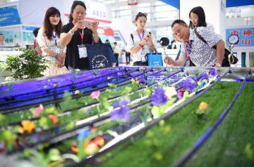 Chinas service outsourcing growth picks up