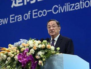 Top political advisor calls for green development