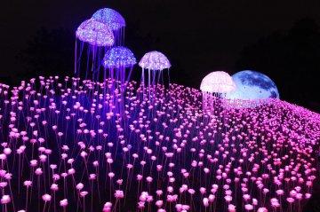 China Fuzhou LED Lighting show