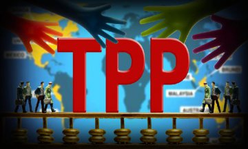 New Zealand PM open to China involvement in TPP alternative