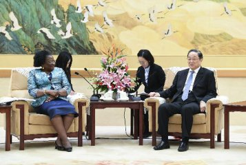 China, Mozambique vow to expand cooperation