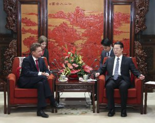 China, Russia discuss energy cooperation