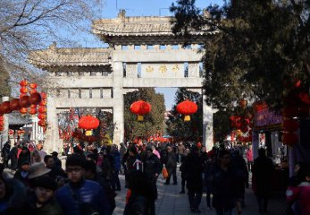 Chinas consumption to maintain strong growth in 2017
