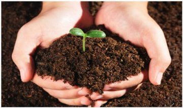 Scale of soil remediation industry to hit RMB24 bln in 2017