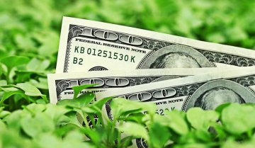 USD32 bln of green bonds issued last year,standards and guidance to release