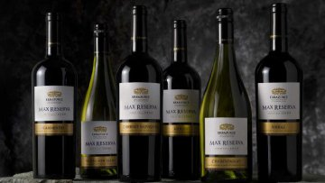 China becomes leading purchaser of Chilean wine