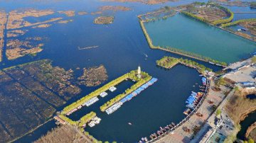 Overseas experts expect Xiongan New Area model for developing economies