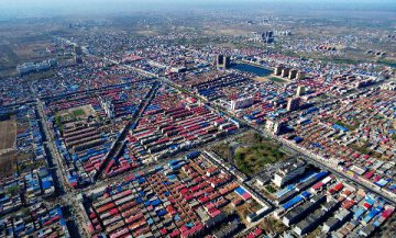 Xiongan New Area to bridge growth disparities: Official