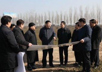 Hebei promises dedication in building Xiongan New Area