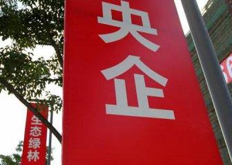 Chinas mixed-ownership reform making progress
