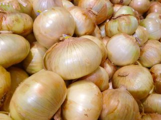 China signs onion export agreement with New Zealand