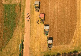 High costs challenge Chinas agricultural competitiveness: report