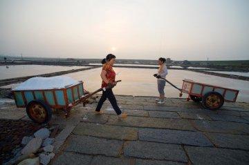 China Fujian Saltworks