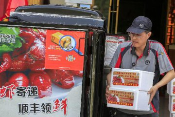 Chinas express delivery firms see rapid growth in 2017