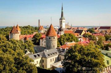Estonia welcomes Belt and Road Initiative: investment adviser