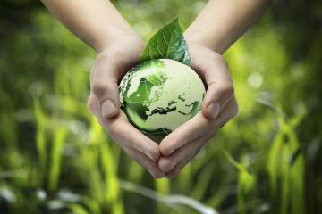 Green bond rules need to be on par with global trends