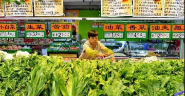 Chinas consumer price up 2.1% in July