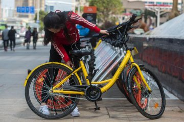 Ofo co-founder denies acquisition rumor