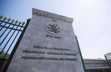 ​China plays important role in WTO dispute settlement mechanism: expert