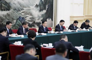 Chinese vice premier urges to build world-class Greater Bay Area