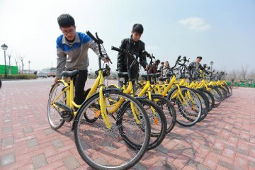 Bike makers hit hard by sharp slowdown in sharing sector