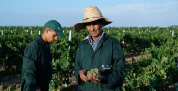 ​Moroccan winery aims to enter Chinese market via China first import expo