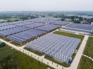 PV exports may rise as EU curbs end