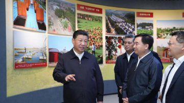 Xi stresses building pilot FTZs toward new heights of reform, opening-up