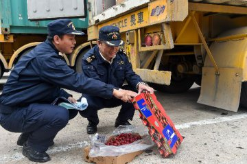 Chinese demand propels Chiles fruit exports to record high