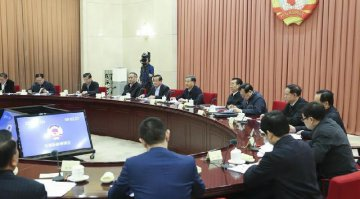 ​Political advisors encourage advancement of new energy automobile sector