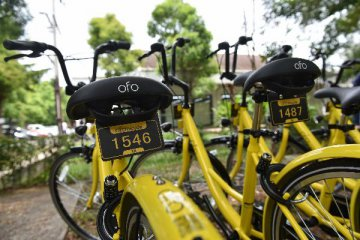 No threat of bankruptcy, says Ofo founder Dai Wei