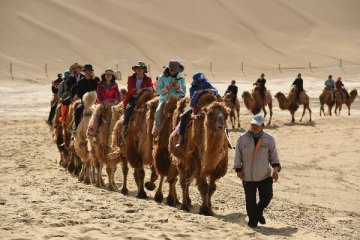 Foreign businesses see Belt and Road as development opportunity
