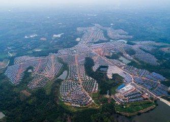 Chinese enterprises eye green growth