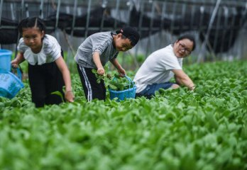 ​Chinas farm produce prices rise slightly